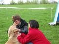 2010-05-09_dansk_hovawart_udstilling_hvalpeklassen_2