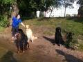 2012-08-21_polen-_ussi_gandi_palacowe_pieknosci_og_bohun_chatka_zielarki_5